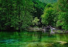 Tranquility (Jocelyn777) Tags: water trees foliage landscape lake bridge green parks vrelobosne sarajevo bosniaandherzegovina balkans travel