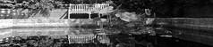 Le bassin aux lotus en marque-page II/III... (stephane.desire) Tags: bassin lotus marquepage noiretblanc monochrome eau pierre banc reflet