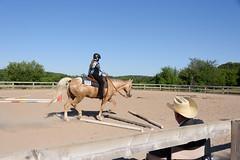 JBC_5704.jpg (Jim Babbage) Tags: krahc bethany appaloosa horses horseshow 2018