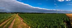 wolken... (st.weber71) Tags: nikon nrw niederrhein natur deutschland d850 outdoor wolken wolkenstimmung wolkenbilder wolkenhimmel farben feld felder panorama himmel windräder