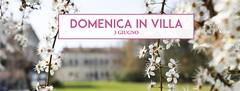 DOMENICA IN VILLA! (GothaNews.com) Tags: evento stra venezia villafoscarinirossi