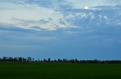 Dämmerung ////// insulation (Pixelchen1) Tags: nikon5500 nikonafs35mm114g eveningsky abendhimmel lookinthesky blickindenhimmel mondschein moon mond blue blau landscapes landschaft