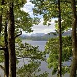 A View Through Early Autumn thumbnail