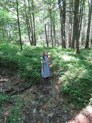 Hiking in WV (g.s.springer) Tags: bluebend wv monongahela national forest blue bend greenbrier county