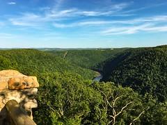 Cheat River Valley (sumilex77) Tags: coopersrockstatepark coopersrockstateforest overlook cheatriver coopersrock westvirginia