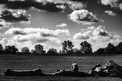 L'homme et l'arbre (artsphotography.fr) Tags: wood woods parc park ville city men sky ciel homme
