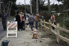 Asilomar Split Rail Fence Project 5-24-18-33 (CSPF Park Champions program) Tags: 52418 parkchampions asilomar