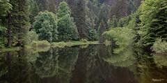 26052018-IMG_2294 (Steffan Photos) Tags: labresse grandest france fr randonnée vosges la bresse lac corbeaux bramont sechemer étang refuge union col vierge vieille montagne