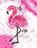 Flamingo (Chaos Hummingbird) Tags: art artist painting flamingo photography photographer phaotoshop paint pink life