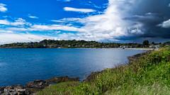 Victoria Shoreline  British Colombia Canada-7a (Yasu Torigoe) Tags: