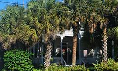 Key West (Florida) Trip 2017 0331Ri 4x6 (edgarandron - Busy!) Tags: florida keys floridakeys keywest plants trees bushes house houses