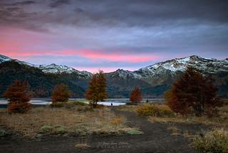 Atardecer en el lago - Parq. Nac. Conguillio (Norpatagonia Chile)
