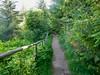 Enderby Cliffs 17 (benlarhome) Tags: bc britishcolumbia enderby enderbycliffs hike hiking trek trail trekking spring provincialpark