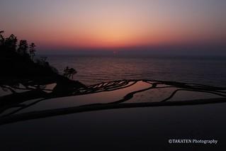 Shiroyone Senmaida at dusk