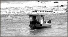 Barco pesqueiro (o.dirce) Tags: barco embarcação pesqueiro mar ondas odirce barcopesqueiro