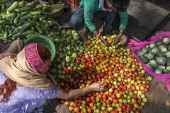 red green and yellow (charlesgyoung) Tags: charlesyoung fruit vegetable market india jaipur nikon nikonphotography karineaignerphotographyexpedition streetphotography travelphotography saree