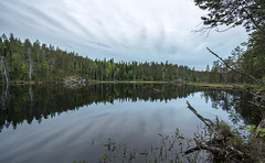 Summer Evening (tomi.a) Tags: finland nature suomi wilderness mirrorlake forest water hiidenporttinationalpark nationalpark remote trees clouds sky reflection wood camping hiking outdoor summer landscape sotkamo kainuu light evening mirror travel environment smooth peaceful still