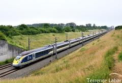 Le Velaro 4010/09 assurant un train depuis Londres pour Bruxelles de passage à Antoing ce 11 juin 2018. (Photographie ferroviaire) Tags: sncb nmbs eurostar velaro e320 lgv hst hsl line bruxelle lille londres train pont vegetation catenaire vitesse rail railway