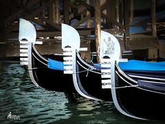 Venice PRJ06
