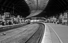 Platform 3 (Gabo Barreto) Tags: york station railway train film olympus trip35 blackandwhite analoguephotography 35mm kosmofotomono iso100 filmisnotdead ishootfilm selfdeveloped scannedfromfilm filmcamera 135