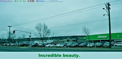 incredible beauty (Ultrachool) Tags: road streets saint john newbrunswick canada