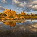 Mono Lake Golden Hour Reflection