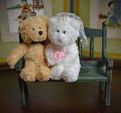 A June Bride (BKHagar *Kim*) Tags: bkhagar june bride junebride bear teddy teddybear animal fuzzy toy stuffed wedding bouquet jena jasper