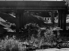Under the Highway (Tricia H C) Tags: monochrome highway culvert blackandwhite blackwhite nature concrete