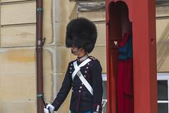 Denmark - Copenhagen - Amalienborg Royal Palace (Marcial Bernabeu) Tags: marcial bernabeu bernabéu denmark danmark dinamarca danish danes danés danesa guard guardia scandinavia escandinavia amalienborg slot royal palace palacio