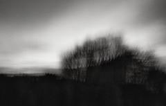 early morning in a far away land (ChrisRSouthland) Tags: motionblur longexposure mm leicammonochrom elmarit28mmf28 morning sunrise icm monochrme blackandwhite blackwhite bw schwarzweiss