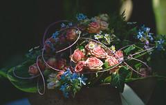 ... :) (joachim.d.) Tags: höri gärten garten bohlingen rosen dekoration tischdekoration blumen blumenkunst