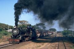Rare bird (Bingley Hall) Tags: rail railway railroad transport train transportation trainspotting locomotive engine steam india asia metregauge gujarat mahuva 462 nis 962 passenger bagnall