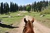 Horse Ride, Gulmarg, Kashmir (Mayur Kakade) Tags: kashmir india incredibleindia horse ride gulmarg tourism riding landscape