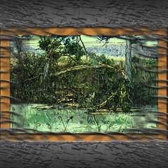 Miralrio (seguicollar) Tags: imagencreativa photomanipulación art arte artecreativo artedigital virginiaseguí agua río orilla árbol vegetación plantas ramas