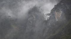 China (richard.mcmanus.) Tags: china landscape mcmanus mountains mist forest clouds yunnan tacheng