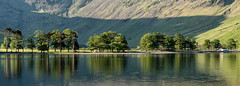 Buttermere Pines (thomasgreen92) Tags: sun england photography photo landscape sea sexy light lighthouse tripod manfrotto lens camera picture image grass colour rocks ocean water sky bay rock nikon d750 1835 dawn sunrise tree lonetree lakedistrict beautiful beauty reflections reflection lake mountain wood serene