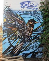 Malines Near the Skate Park @Gijs Vanhee  IMG_0279 (blackbike35) Tags: malines melchelen belgique art artwork de rue aérosol bomb paint graff graffiti street streetart urban public writing artist