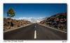 El Teide Tenerife (BPvST - Benny Poncelet van Sint-Truiden) Tags: blauw tenerife el teide