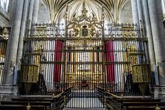 Catedral de Zamora, rejería del presbiterio (ipomar47) Tags: zamora cathedral spain catedral españa romanico duero monumento nacional