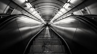 Perfect Metro Symmetry.