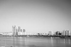 (赤いミルク) Tags: blackandwhite monochrome ビンテージ ビニル black romantism gothic コントラスト 赤 red ウォール wall ゴースト 悪魔 ghost 友人 ドア doors 贈り物 地平線 horizon モノクローム 暗い street 壁 surreal intriguing 生活 life door texture 秋 雨 overpast 賞賛 光 影 白黒 幽霊 いかだ ダンス road window building architecture skyscraper city sky