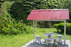 malaysia-6729 (ericvdb) Tags: cameronhighlands highlands teaplantation plantation malaysia