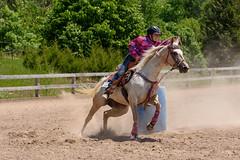 JBC_6424.jpg (Jim Babbage) Tags: krahc bethany appaloosa horses horseshow 2018