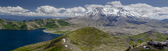 From Harry's Ridge (TW Olympia) Tags: mount saint helens harrys mt ridge mountain clouds blue sky