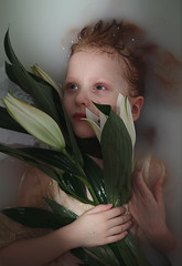 Vivify {2} (dewframe) Tags: girl flower littlegirl emotive beauty naturalportrait sweet melody light milk water