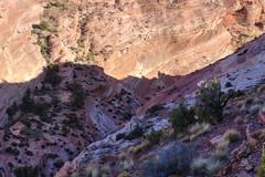 Depths of a new canyon discovery (Chief Bwana) Tags: az arizona pariaplateau vermilioncliffs navajosandstone slotcanyon psa104 chiefbwana 500views