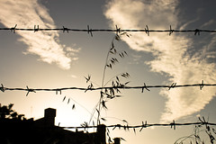 Keep out! Humans in here. (Ladistorta) Tags: city sunset città edifici buildings barbedwire filospinato keepout suburbs rome roma periferia landscape