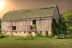 No Return (henryhintermeister) Tags: barns wisconsin oldbarns clouds farming countryliving country sunsets storms sunrises pastures nostalgia skies outdoors seasons field hay silos dairybarns building architecture outdoor winter serene grass landscape plant cloudsstormssunsetssunrises oakgrovewi