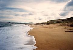untitled. (▲rwed) Tags: uruguay landscape latinamerica latinoamerica sea beach travel trekking 35mm film analog americadelsur yashica yashicat5 ocean hiking southamerica