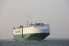 CSCC TIANJIN (angelo vlassenrood) Tags: ship vessel nederland netherlands photo shoot shot photoshot picture westerschelde boot schip canon angelo walsoorden cargo cscctianjin roro